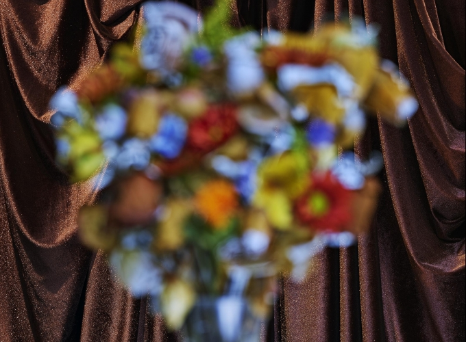 Abelardo Morell: Flowers for Lisa Part II