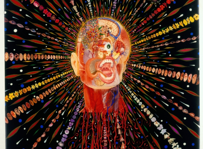 Fred Tomaselli at the Montclair Art Museum