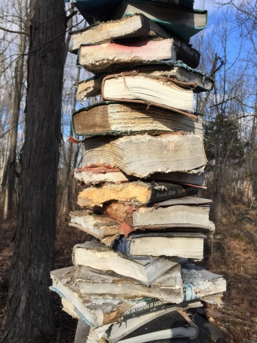 Book Stacks in the Field