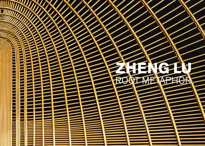 Zheng Lu