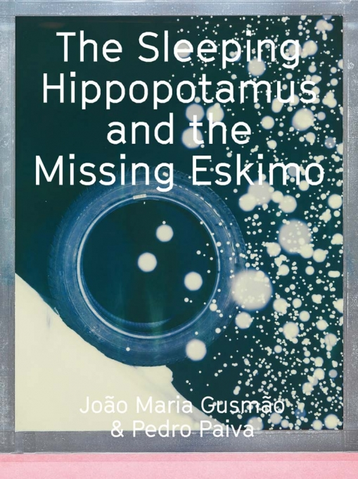 The Sleeping Hippopotamus and the Missing Eskimo