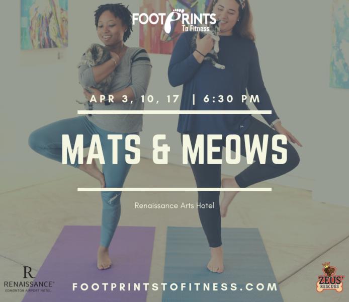 Mats & Meows
