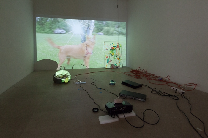 Trisha Baga Installation View Freak Out Greene Naftali New York 2013