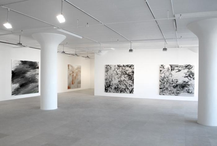 Jacqueline Humphries, Installation view, Greene Naftali, New York, 2006