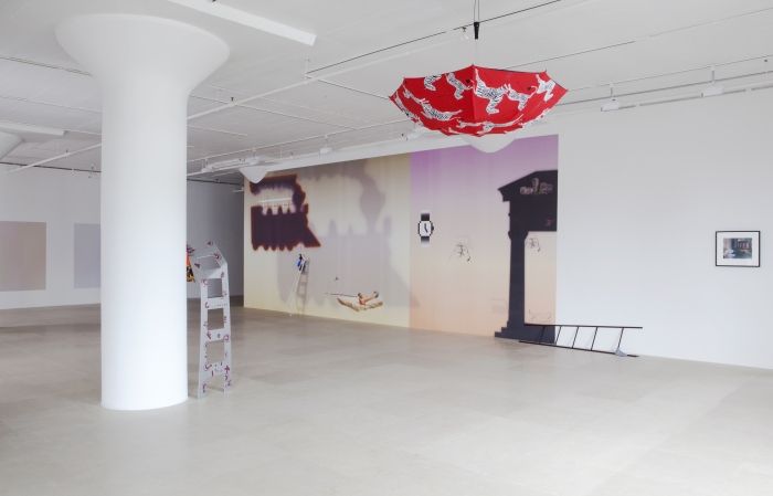 Helen Marten, Installation view, Greene Naftali, New York, 2011