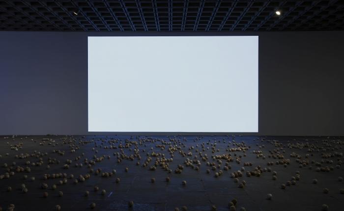 Lutz Bacher, Installation view, Whitney Biennial, 2012