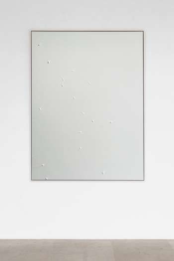 Carissa Rodriguez Yesterday I tried to paint you (Untitled I), 2012 Inkjet print mounted on aluminum, custom maple frame; monthly cryogenic storage fee for donated sperm, legal contract between donor and artist 63 x 47 1/4 inches (160 x 120 cm)