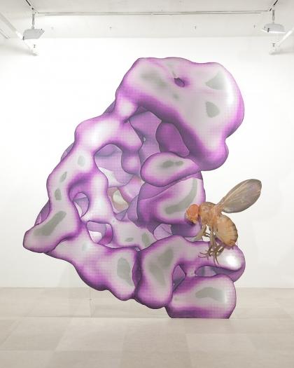 Katja Novitskova Storm Time Approximation (EM Map: Human, Drosophila), 2016 Digital print on 2 layers of aluminum, cutout display; plexiglass  116 1/8 x 105 1/2 x 36 1/2 inches (295 x 268 x 92.7 cm)