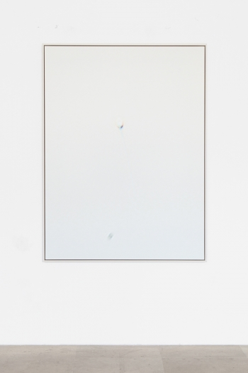 Carissa Rodriguez Yesterday I tried to paint you (Untitled VI), 2012 Inkjet print mounted on aluminum, custom maple frame; monthly cryogenic storage fee for donated sperm, legal contract between donor and artist 63 x 47 1/4 inches (160 x 120 cm)