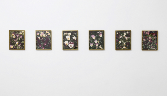 Daan van Golden  New Delhi, 1991  Series of 6 photos  6 Photos 12 1/4 x 9 7/8 inches (31.1 x 25.1 cm) each