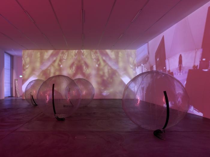 Lutz Bacher, Installation view, Snow, Kunsthalle Zurich, 2013