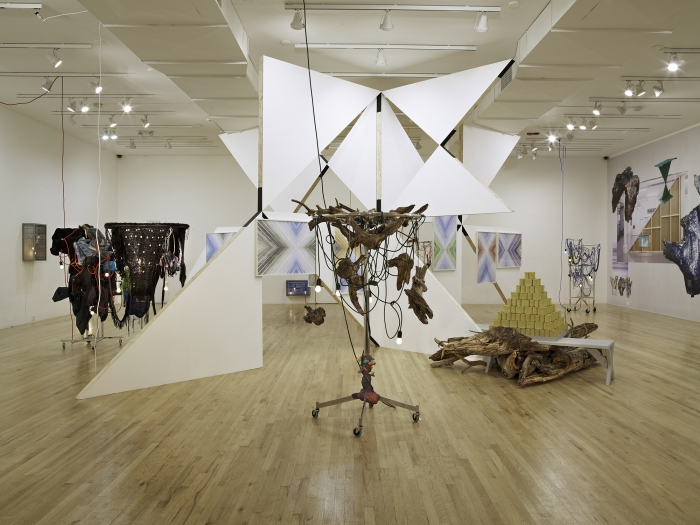 Installation view, The Art and Technique of Folding the Land, curated by Heidi Zuckerman Jacobson, Aspen Art Museum, Aspen, Colorado, 2011