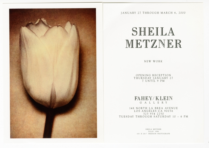 Sheila Metzner