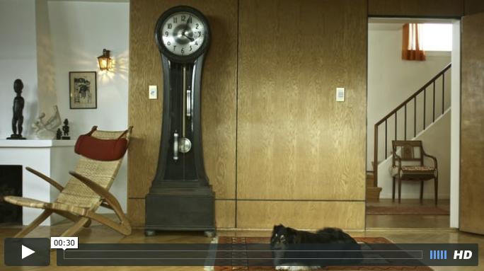 Dog & Clock