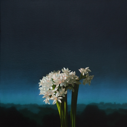 Bruce Cohen, Narcissus Against Evening Sky, Oil on canvas