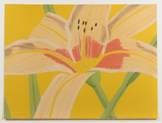 Alex Katz, Day Lily 2, 1969