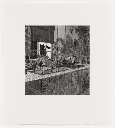 Jonas Wood, Jungle Kitchen, 2017, Etching and aquatint
