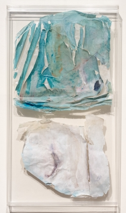 Gail Catlin, Untitled, Mixed media and oil on paper and plastic film
