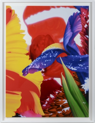 Marc Quinn, Portraits of Landscapes 4, Pigment Print
