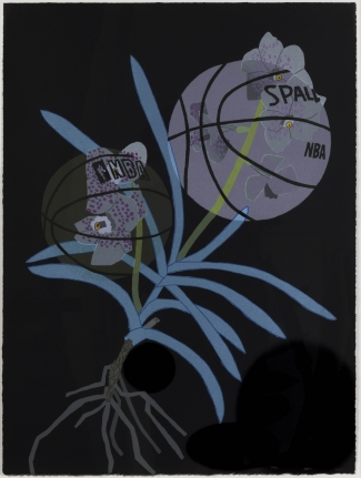 Jonas Wood, Double BasketBall Orchid 2 (State III), 2020, Lithograph
