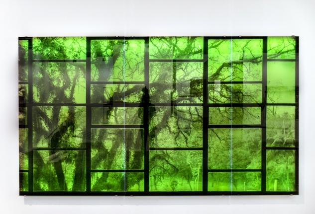 Oscar Niemeyer with Tree, Veronika Kellndorfer, Christopher Grimes Gallery