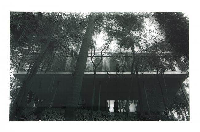 Tree House (Casa de Vidro), Veronika Kellndorfer, Christopher Grimes Gallery