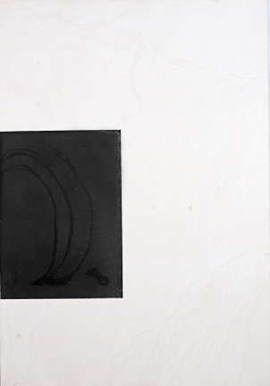 Untitled (Palms in Wind) from: White Carrot
