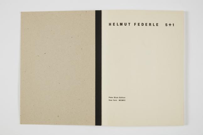Helmut Federle, 5 + 1,1990