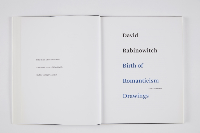 David Rabinowitch: Birth of Romanticism Drawings, 2010