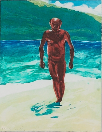 Untitled (Man Walking) from: Year of the Drowned Dog