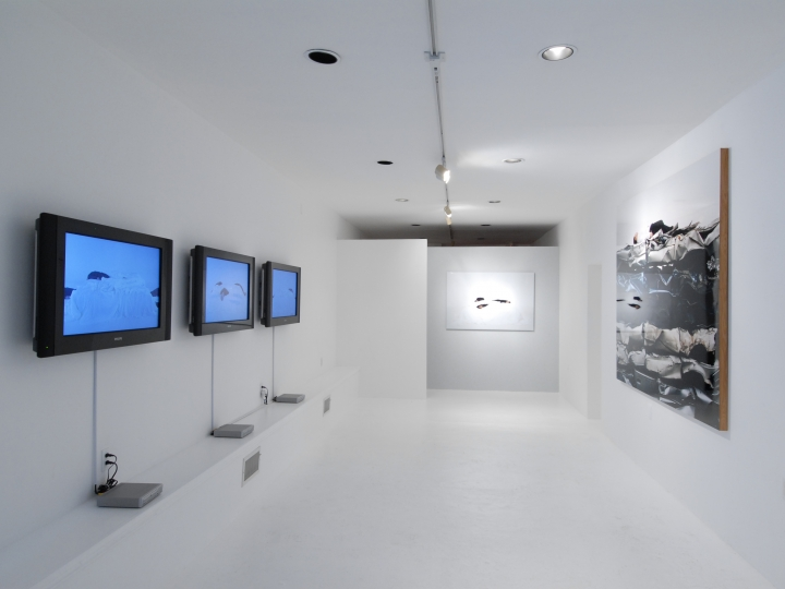 MARIA FRIBERG embedded 2007. Installation view: Conner Contemporary Art.