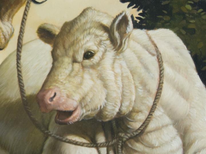 Erik Thor Sandberg cow