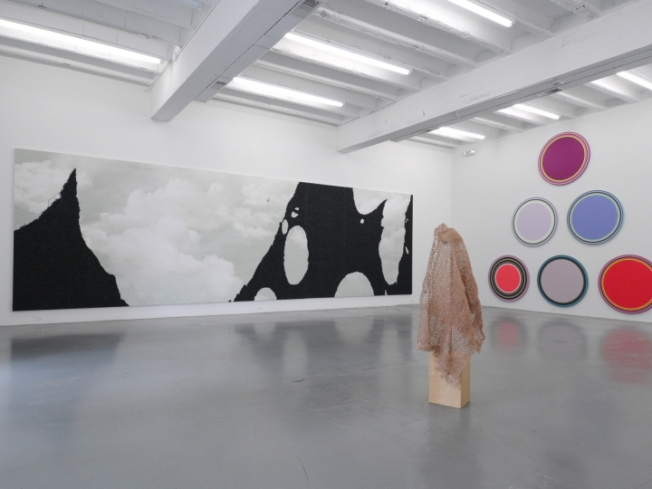 WOOJIN CHANG, EMILY BIONDO and LINLING LU ACADEMY 2011 Installation view: Conner Contemporary Art.