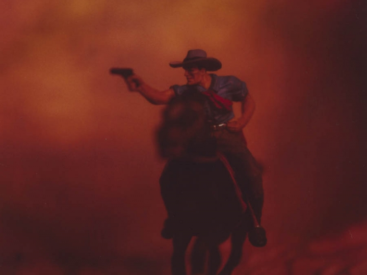 David Levinthal the wild west