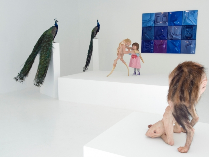 PATRICIA PICCININI The Welcome Guest 2011. Installation view: Conner Contemporary Art.