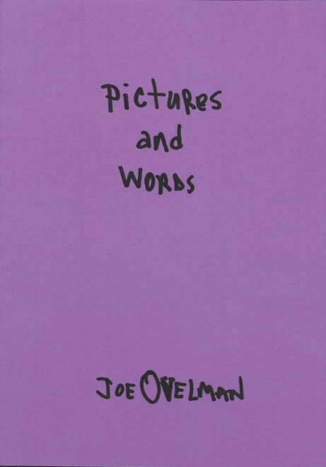 PICTURES AND WORDS book cover