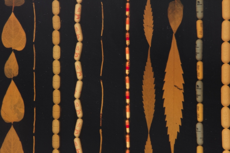 FRED TOMASELLI, Untitled (Rug),1995 (detail)