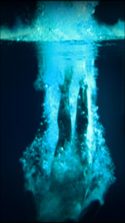 , BILL VIOLAThe Last Angel,2002 Color video on plasma display mounted vertically on wall 47 ½ x 28 ½ x 4 in. (120.7 cm x 72.4 cm x 10.2 cm)