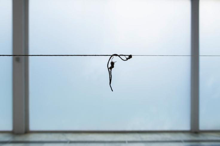 TERESA MARGOLLES, 57 cuerpos (57 Bodies), 2010
