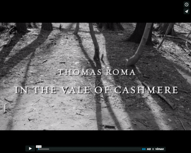 Video Release: Steven Kasher Gallery Releases New Video, First in Series: Thomas Roma: In the Vale of Cashmere