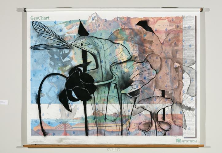 Suzi Davidoff: Field Notes - Exhibitions - Octavia Art Gallery