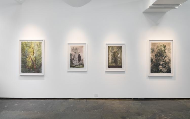 Sara Angelucci Artists Patrick Mikhail Gallery