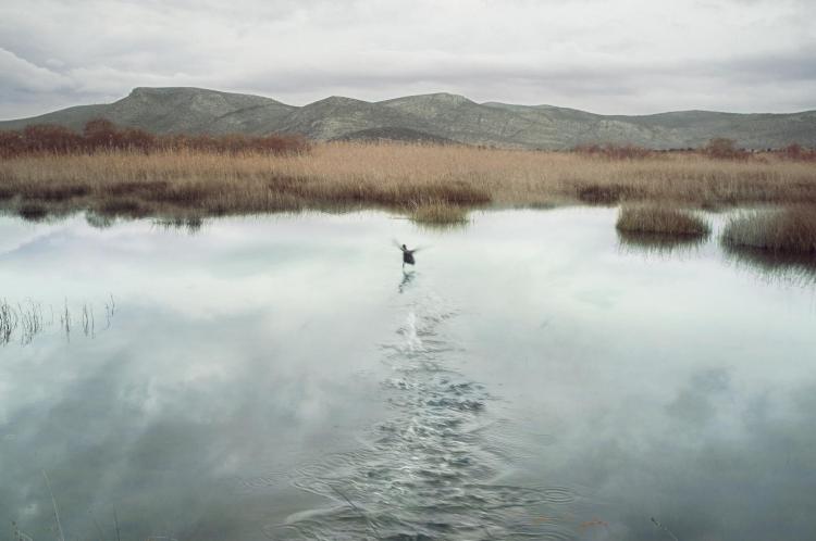 Petros Koublis Art Photography In Landscapes Tryffelgrisen Gallery