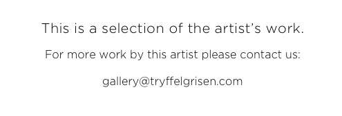 Bence Bakonyi Art Photography Nameless Dignity Cognition Incognito Prints Gallery Tryffelgrisen