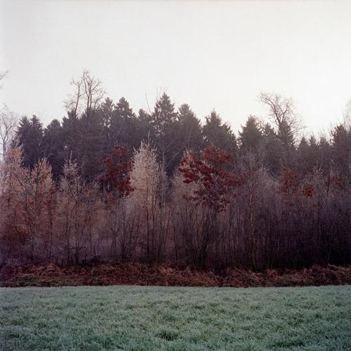 Florian Reischauer Grüß Gott - a fairy tale | Pieces of Berlin
