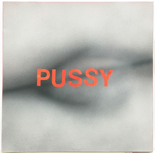 Betty Tompkins Pussy #5, 2016