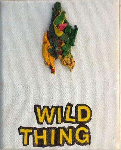 Betty Tompkins  Wild Thing, 2015