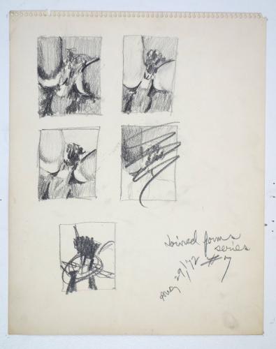 Betty Tompkins Fuck Drawing #7, 1972