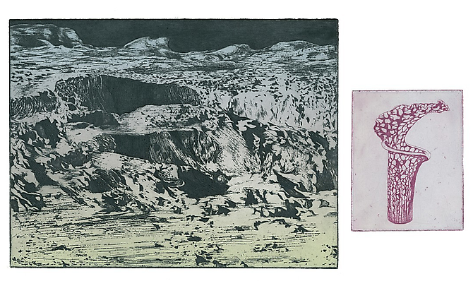 The Annual - Exhibitions - Galerie Protégé