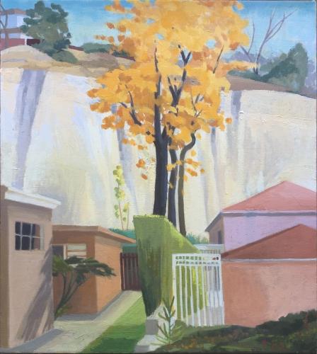 CELIA REISMAN   Hill - Goldfinch St, San Diego 2015
